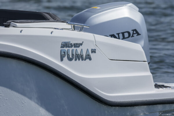 Silver-Puma-BRz-21YM-act-a-010
